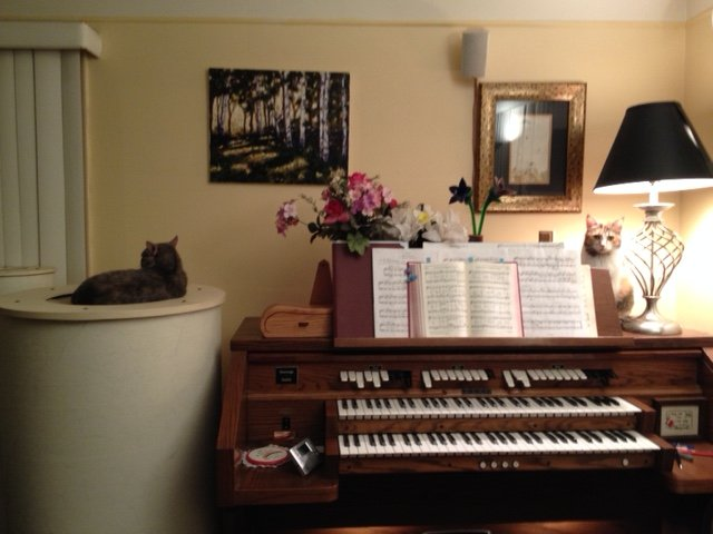 A rare time with 2 cats at the organ while practicing. Violet on the speaker and Kilala near the lamp.